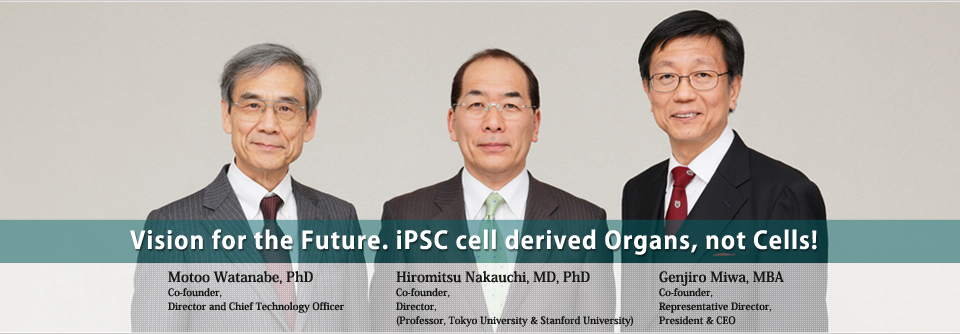 Vision for the Future. iPSC cell derived Organs, not Cells!